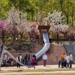 Sortida al parc dels tobogans de Sant Cugat