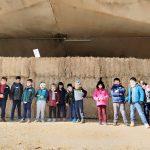 Jornada solidària de P5 al Centre Hípic La Granja